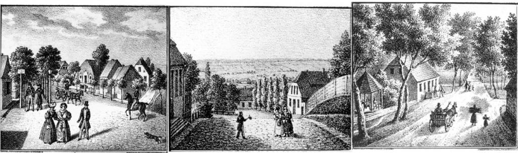 Hallera-Zamkowa-Góra-Gó